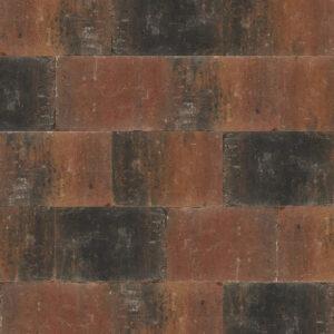 abbeystone 20x30x6 zomerbont