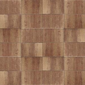 Terrassteen+ 20x30x4 marrone