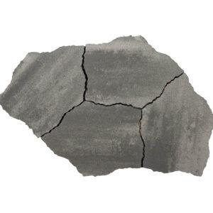 Geoardesia alivo 6cm roma